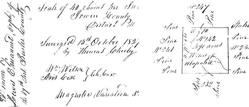 1827 Irwin County survey for the orphans of Lewis Emanuel